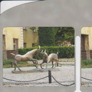 P206.jpg